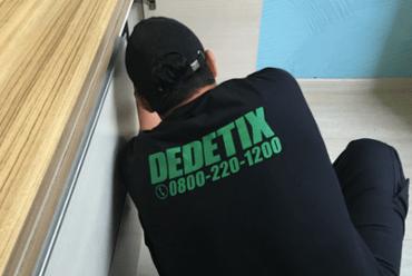 Tratamento CUPIM dedetix